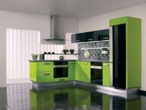 Here A Parrot Green Color Interior With Black An White Its A Very