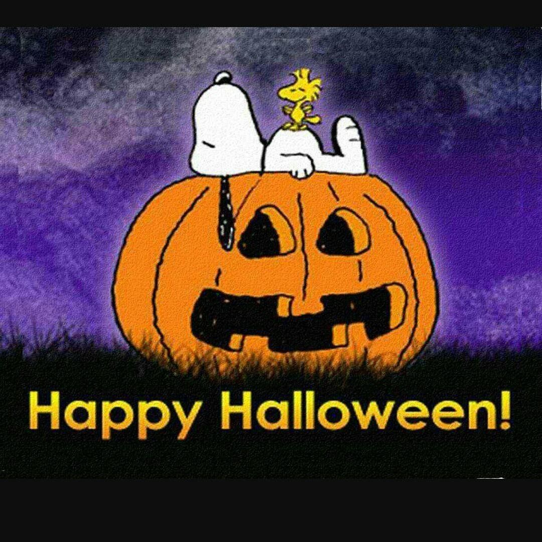snoopy - happy halloween | charlie brown - snoopy & the peanuts gang