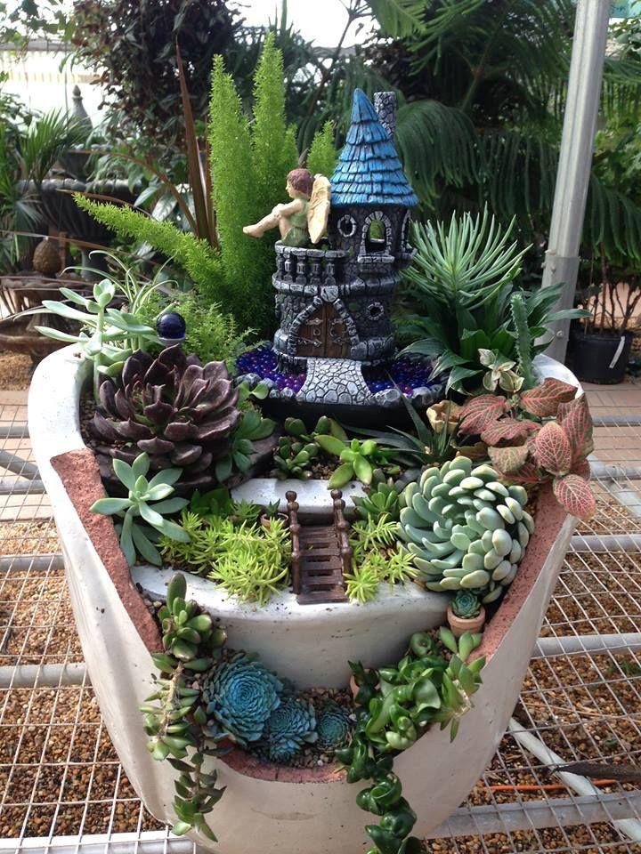 Nice Miniature Garden In Broken Pot.