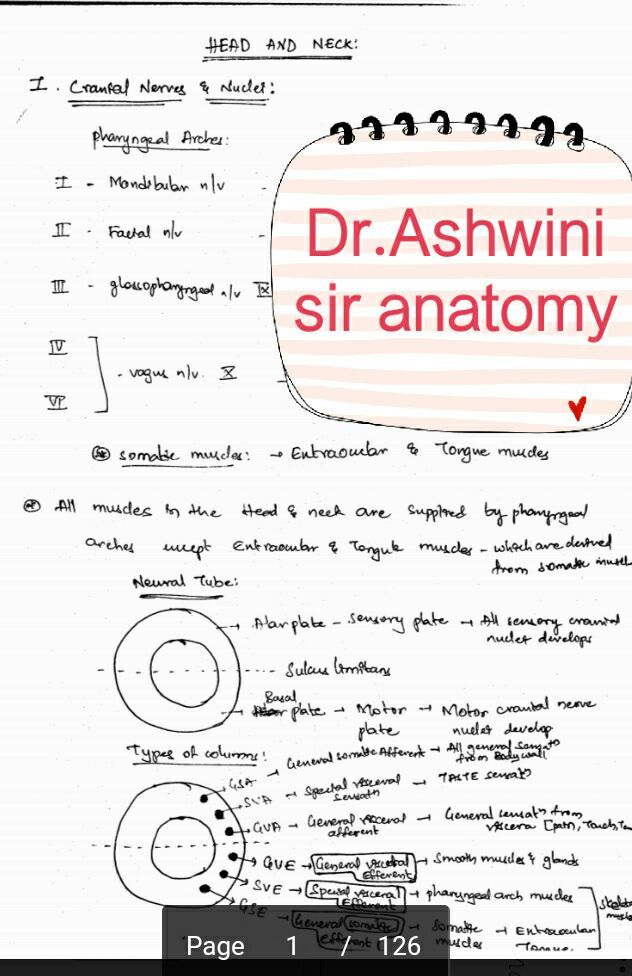 Ashwini sir anatomy handwritten notes PDF | FREE MEDWORLD | MEDICOS ...