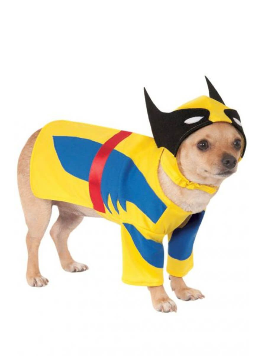 Oficial Mascota Perro Gato Spiderman Super Héroe Halloween Fancy Dress Costume Outfit
