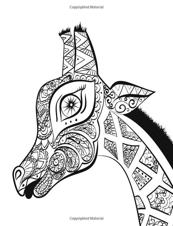 Pin By Barbara On Coloring Giraf Camel Rh Za Com African Designs Books
