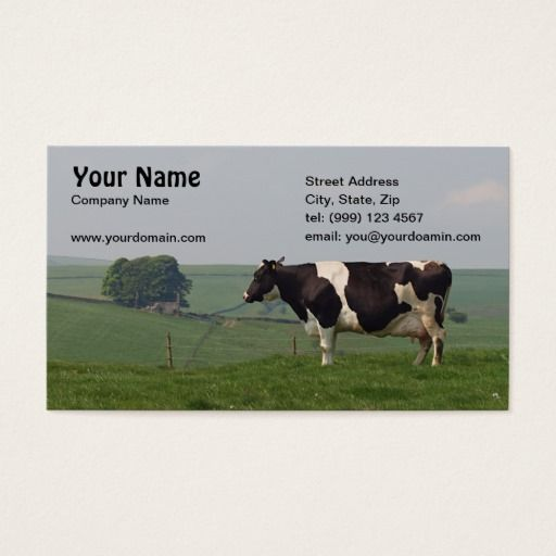 Dairy cow business card business cards agriculture business and dairy cow business card colourmoves