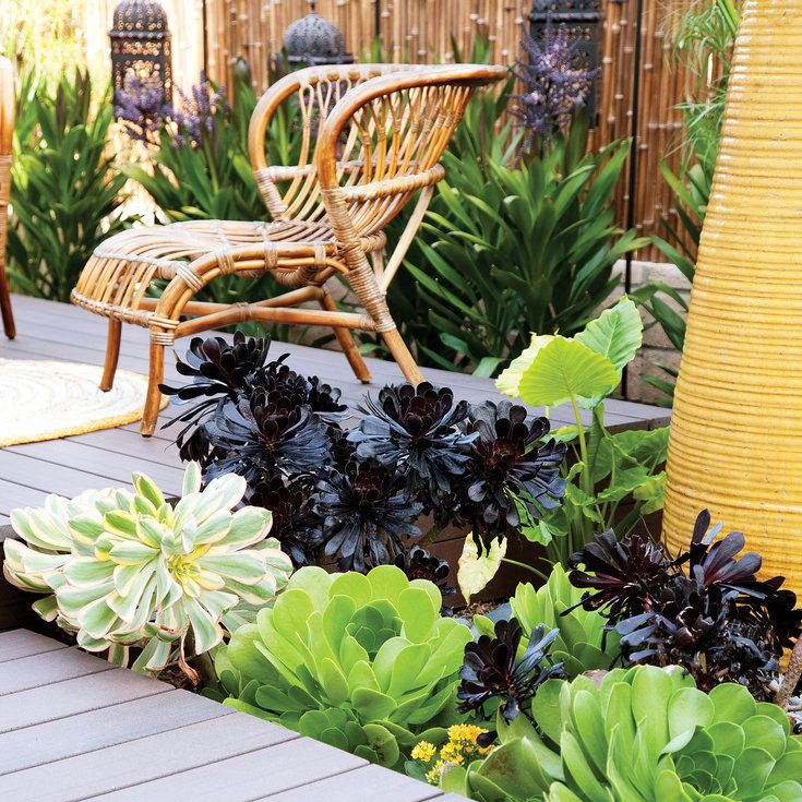 24 Great Ideas from the Western Garden Book of Landscaping ...