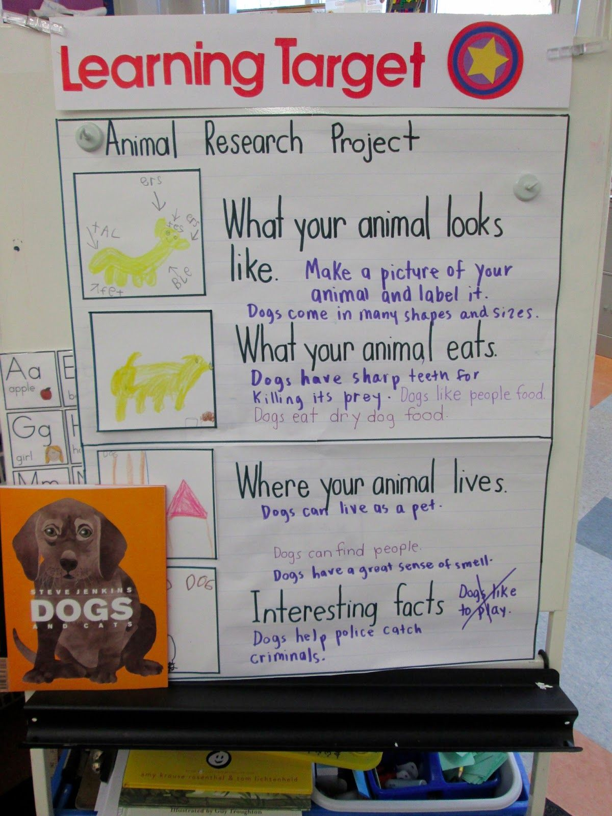 Animal Research Writing