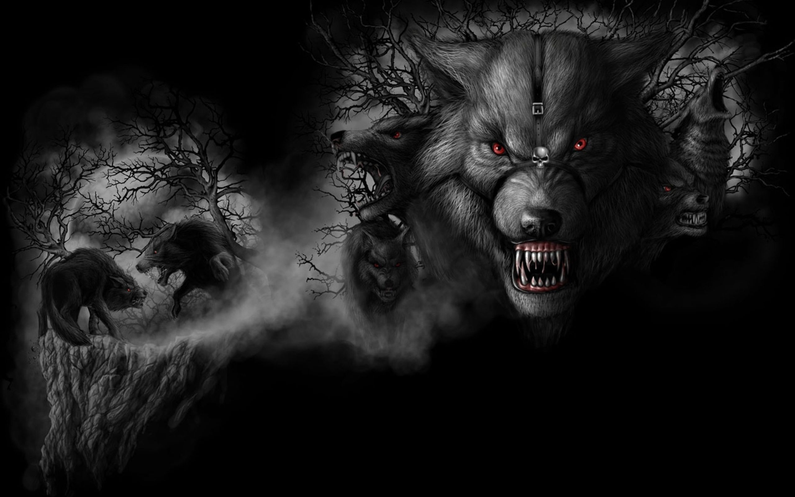 Angry Wolf Wallpapers High Quality Animal Wallpaper