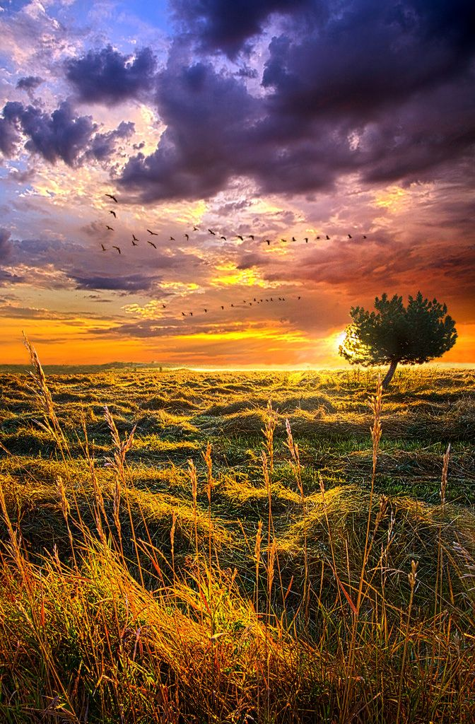 """https://flic.kr/p/ppS9YY 