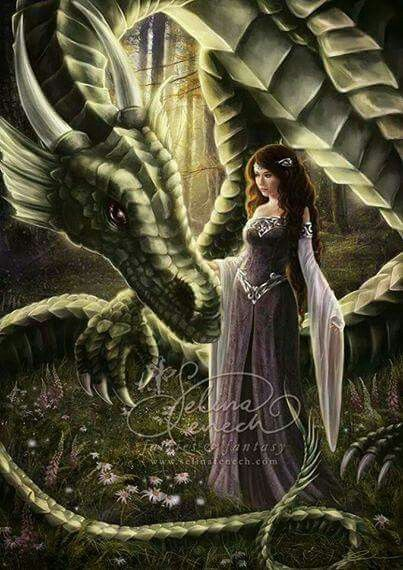 Green dragon and a purple dressed Lady: Harmony & inner peace will come. They give you one step at the time to see. You need to let go of your fears and trust your path. You're doing good!