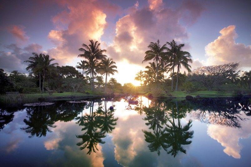 Tropical Garden Sunrise....