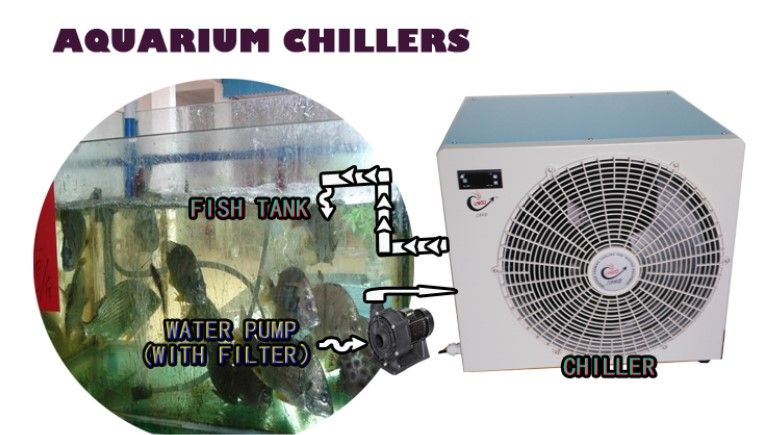 Lando Aquarium Water Chiller Water Chillers Lando Chillers Com Aquarium Chiller Water Chillers Aquarium