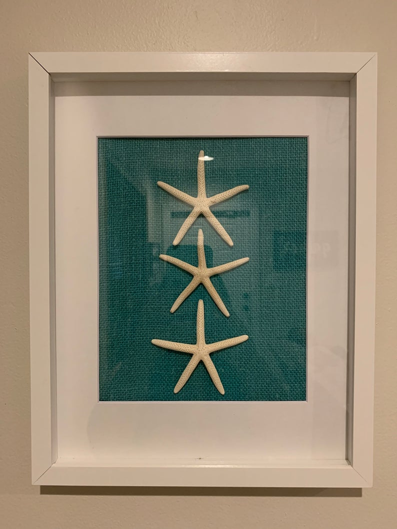 Starfish And Sand Dollar 11x14 Shadowbox Frame Set Etsy In 2020 Starfish Wall Art Sand Dollar Art Starfish Art