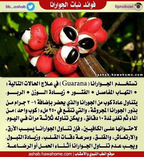 عربي التوت البري يحتوي التوت على متعدد الفينول ومضادات الاكسدة التي قد تساعد في عكس فقدان الذاكرة المرتبط بالعمر ويقلل متعدد الفينول ال Fruit Food Berries