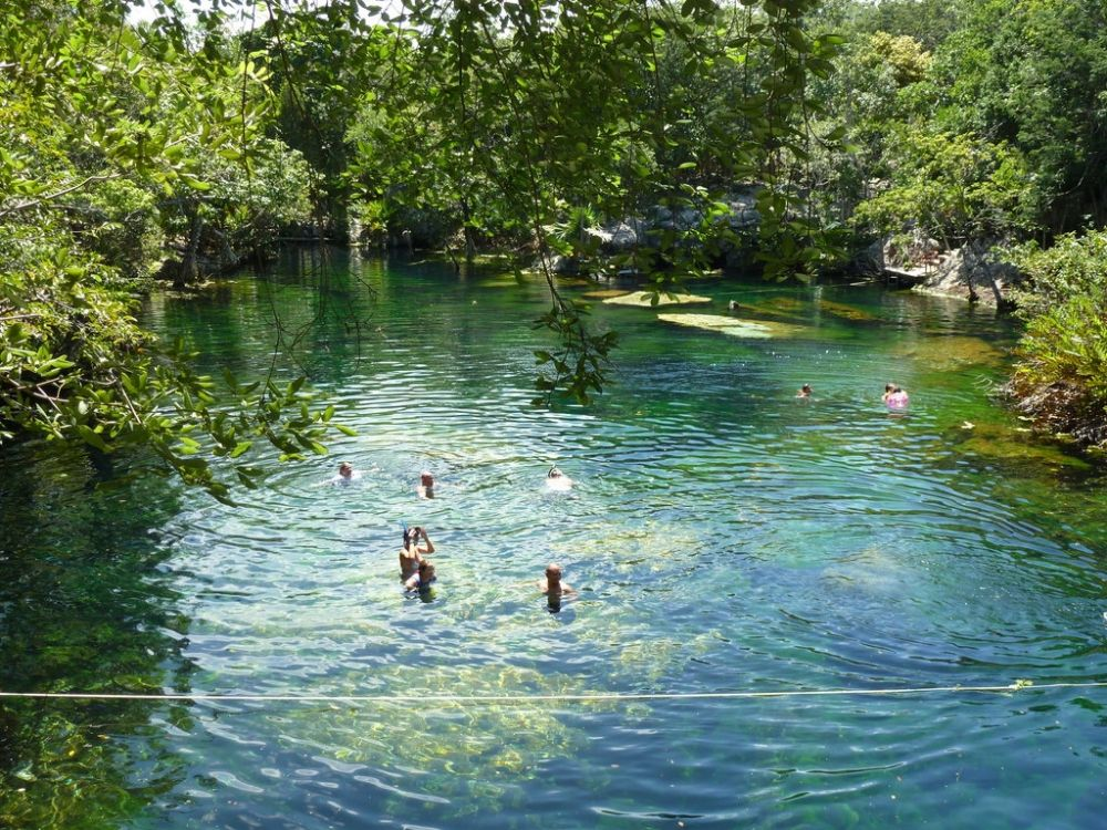 Cenote el jardin eden clear water with lots of different for Jardin eden