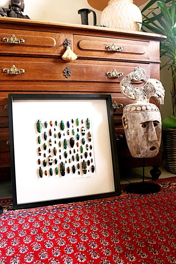 More the 15 years of experience in making artworks with real insects. Each frame is different. All signed by the artist. Quality wooden frame