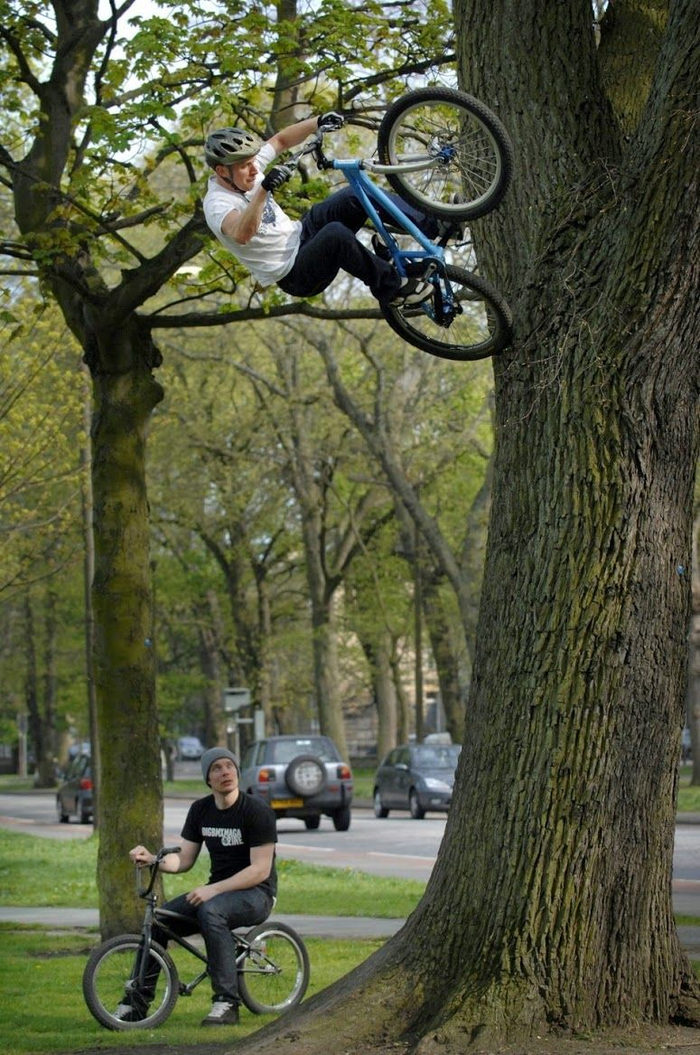 Extreme Mountain Biker Danny MacAskill Rides his bike up a tree   via Imgur