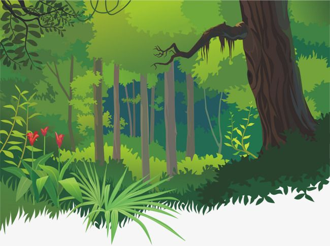 Cartoon Tropical Forests Cartoon Vector Forest Flowers Png And Vector With Transparent Background For Free Download Jungle Tree Landscape Background Forest Drawing