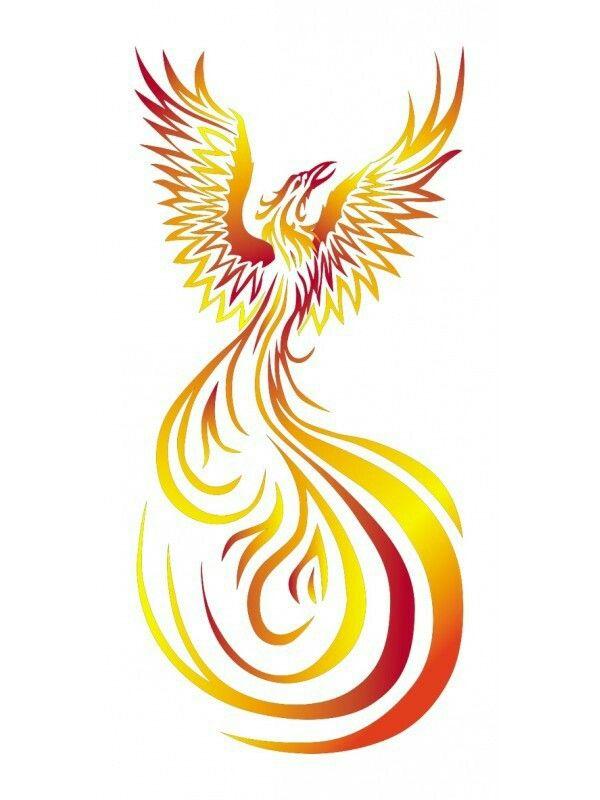 Color Tribal Phoenix Tat Ideas Phoenix Tattoo Design Tribal