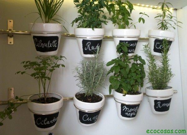 macetas creativas - plantas - reciclados megapost | huerto