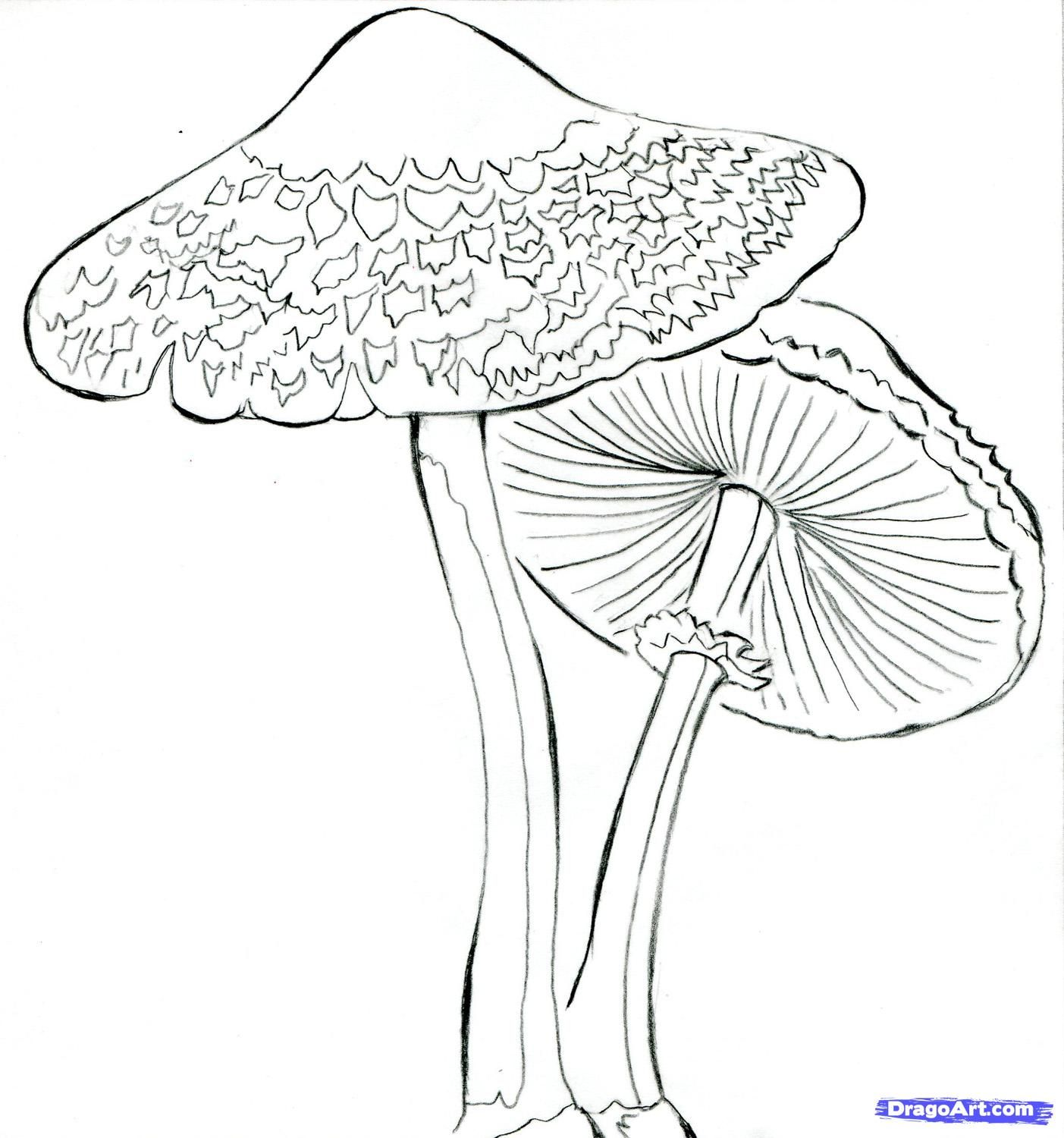 psychedelic mushroom coloring pages - Pesquisa Google | Stained ...