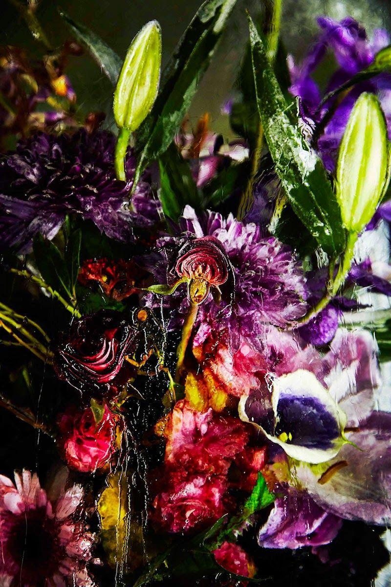 Iced Flowers de Azuma Makoto, una exposición de naturalezas muertas - Iced Flowers by Azuma Makoto