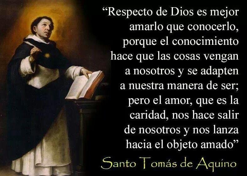 Santo Tomas De Aquino Frases De Santos Santo Tomas Y Santos