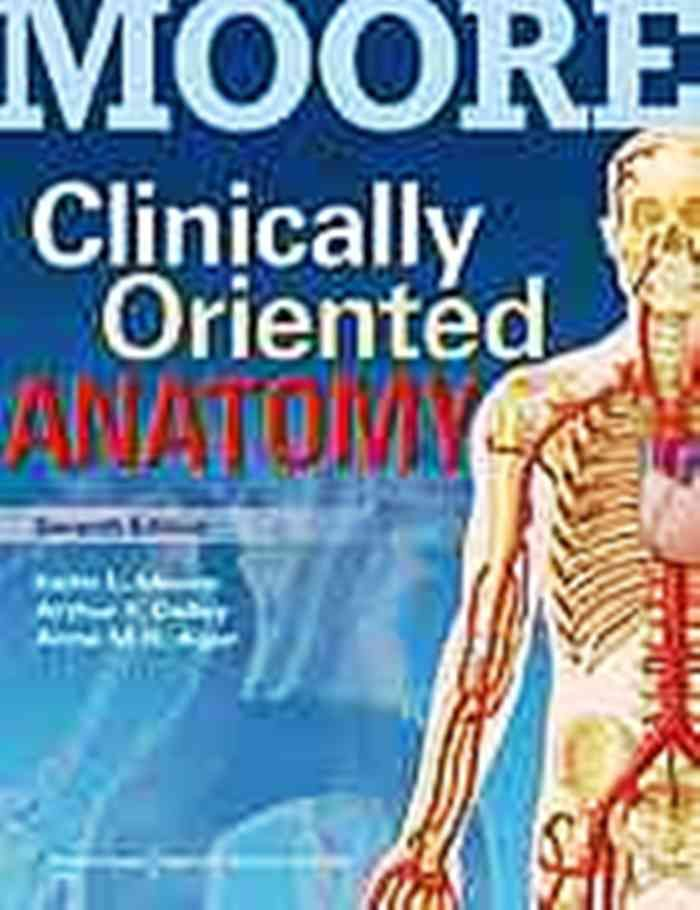 Readthedescriptioncarefully Mooreclinicallyorientedanatomy7th