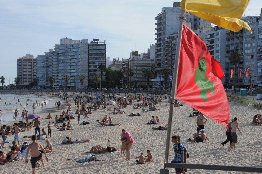 Imm Recomienda No Bañarse En Varias Playas Playa Alga No Recomendable
