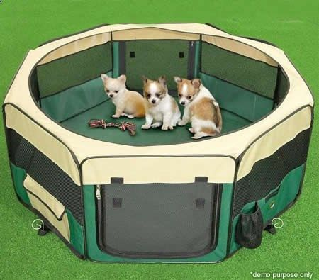 Dog Playpen - Small Sized Portable Pet Tent Playpen Dog/Cat Kennel 8 Panels - & Dog Playpen - Small Sized Portable Pet Tent Playpen Dog/Cat Kennel ...