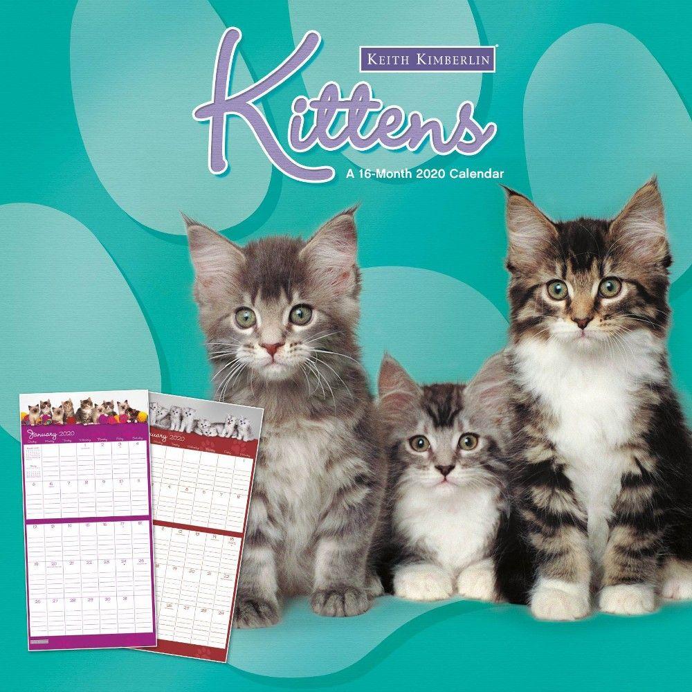 2020 Wall Calendar Keith Kimberlin Kittens Monthly Trends International Free Books Ebooks Calendar
