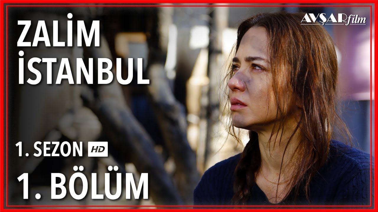 Zalim Istanbul 1 Bolum Tek Parca Istanbul Black Dogs Breeds Youtube