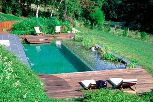 Mod les de piscines naturelles piscines naturelles avec for Construction de piscine naturelle