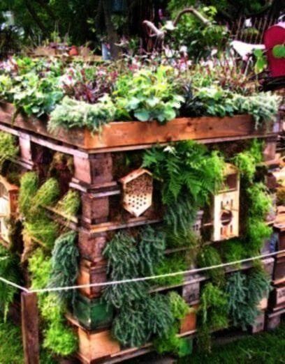 et jardin d'herbes aromatiques construits dans l'une des palettes , Hôtel pour insectes et jardin