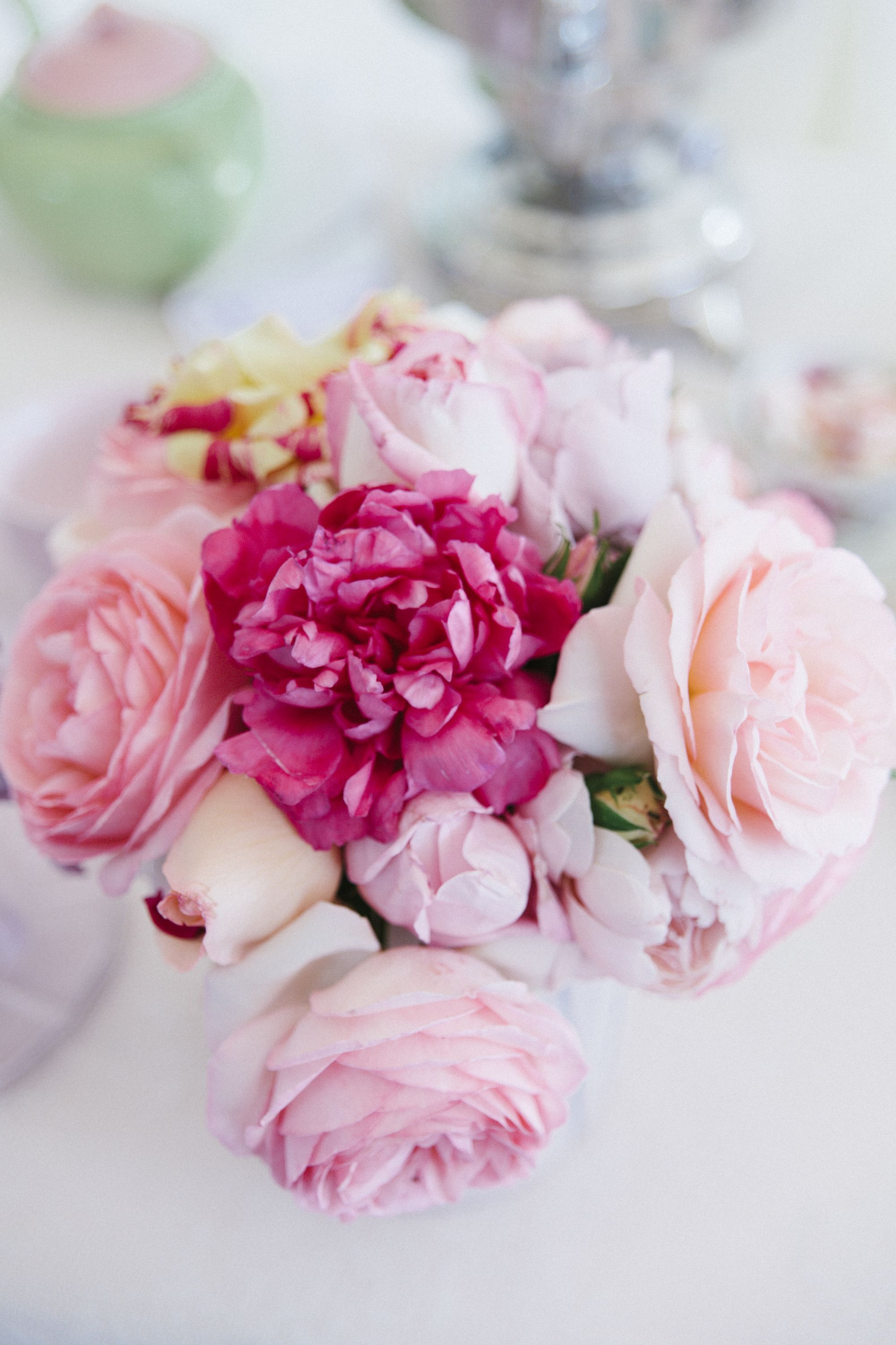 Pin By On Beautiful Flowers Pinterest Ana Rosa