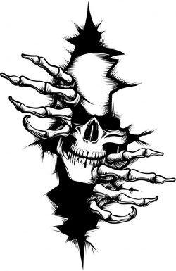 Charming Beauty Download Free Vector Skulls Drawing Skull Artwork Skull Wallpaper
