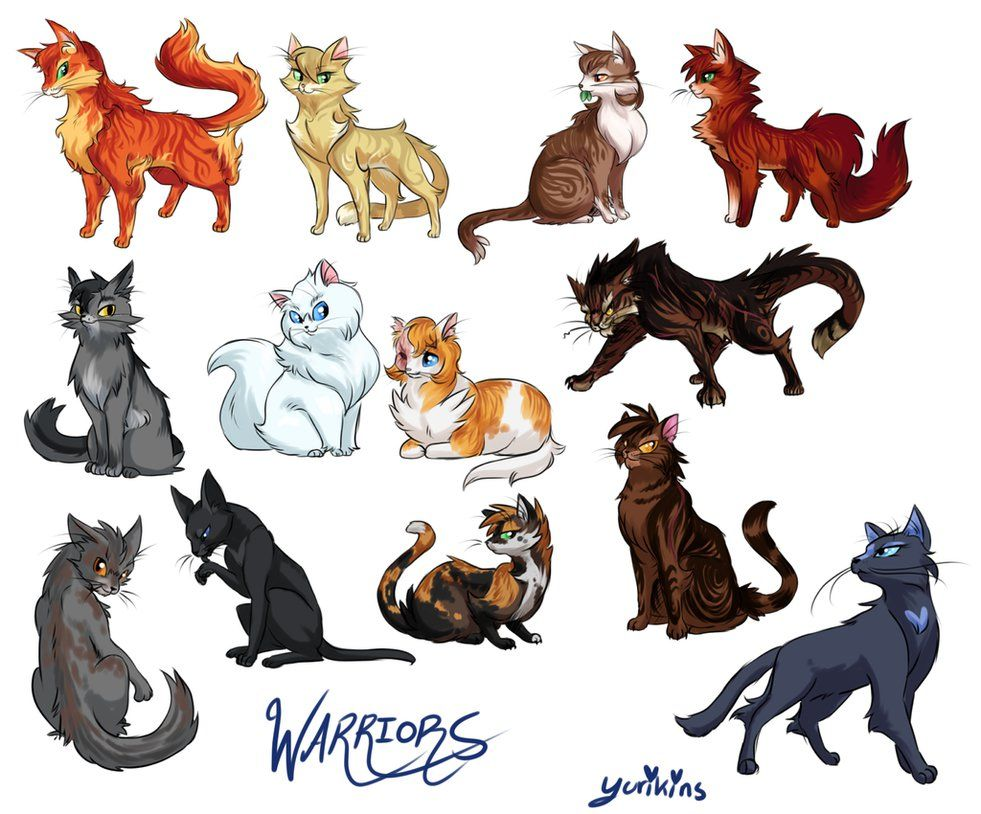 I Drew A Bunch Of Warrior Cats I Wanted To Do Like The Whole