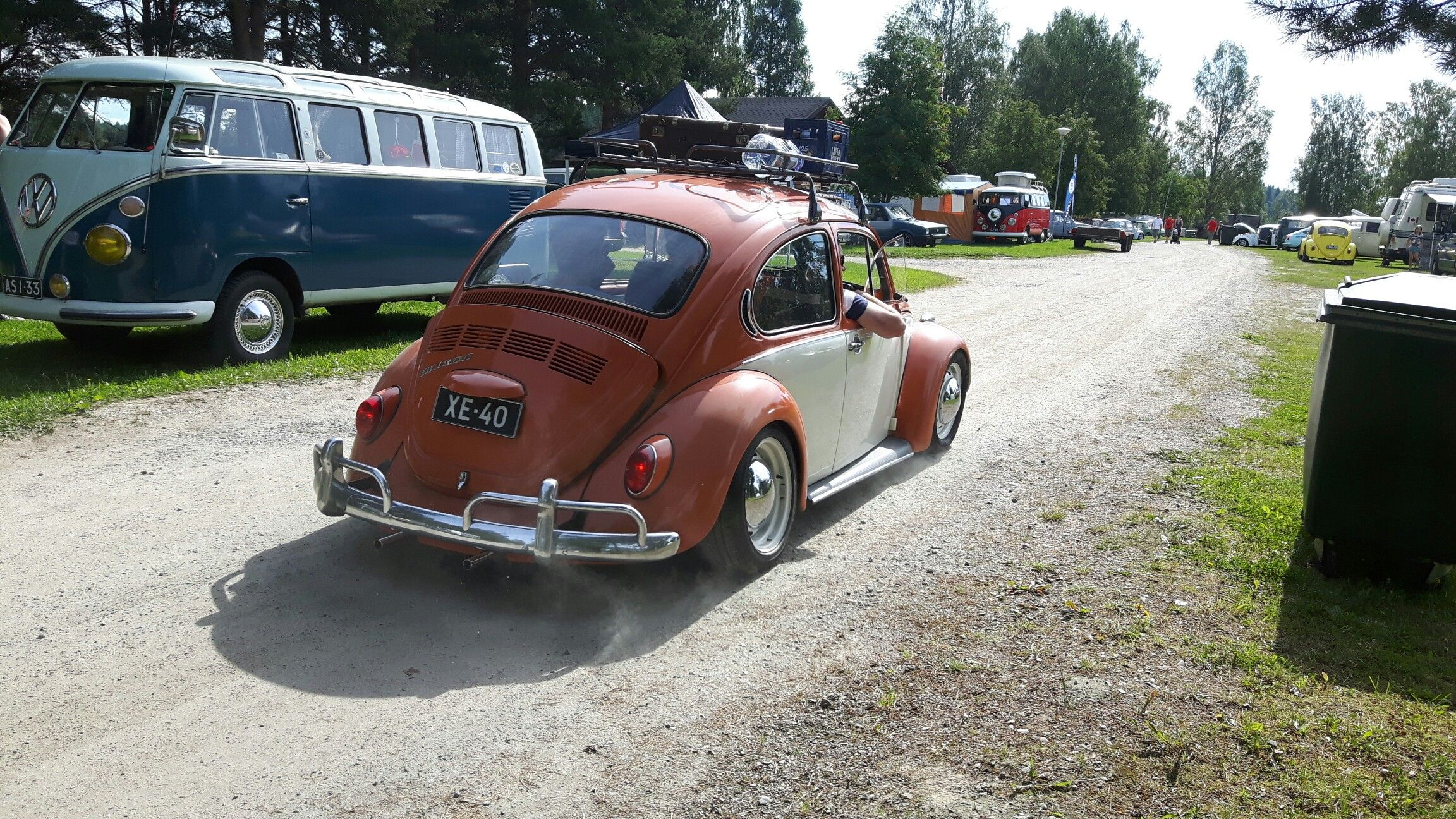 Bug in Fin 2016 Beetle and Junis