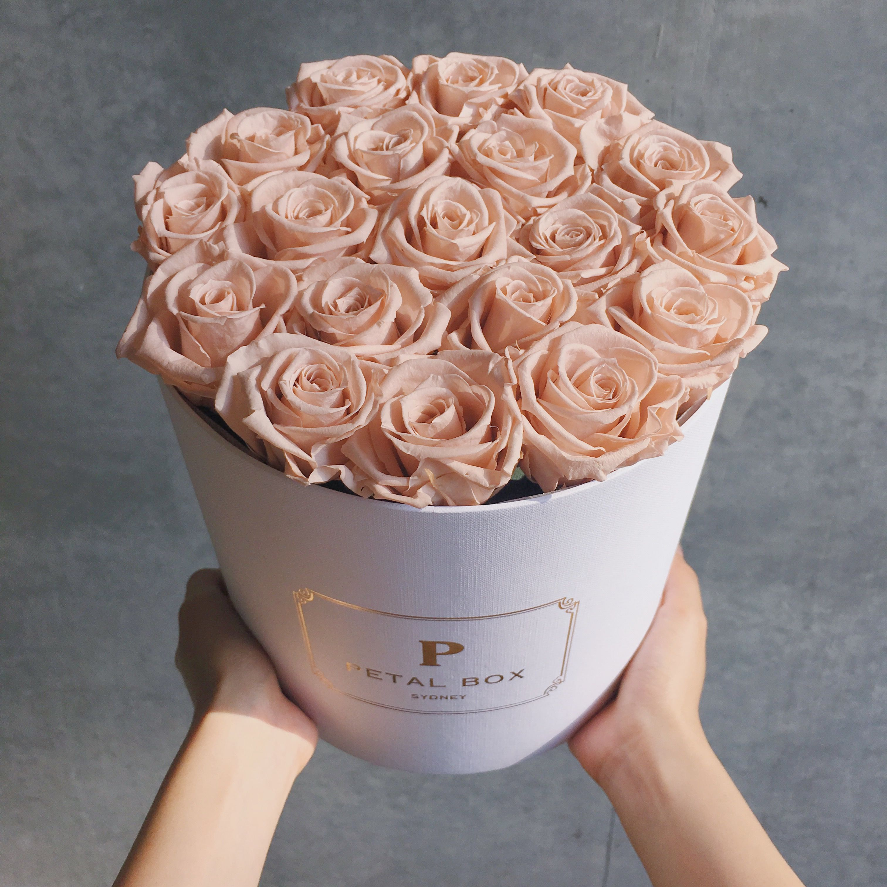 Pin On Long Lasting Roses Flowers Sydney Florist