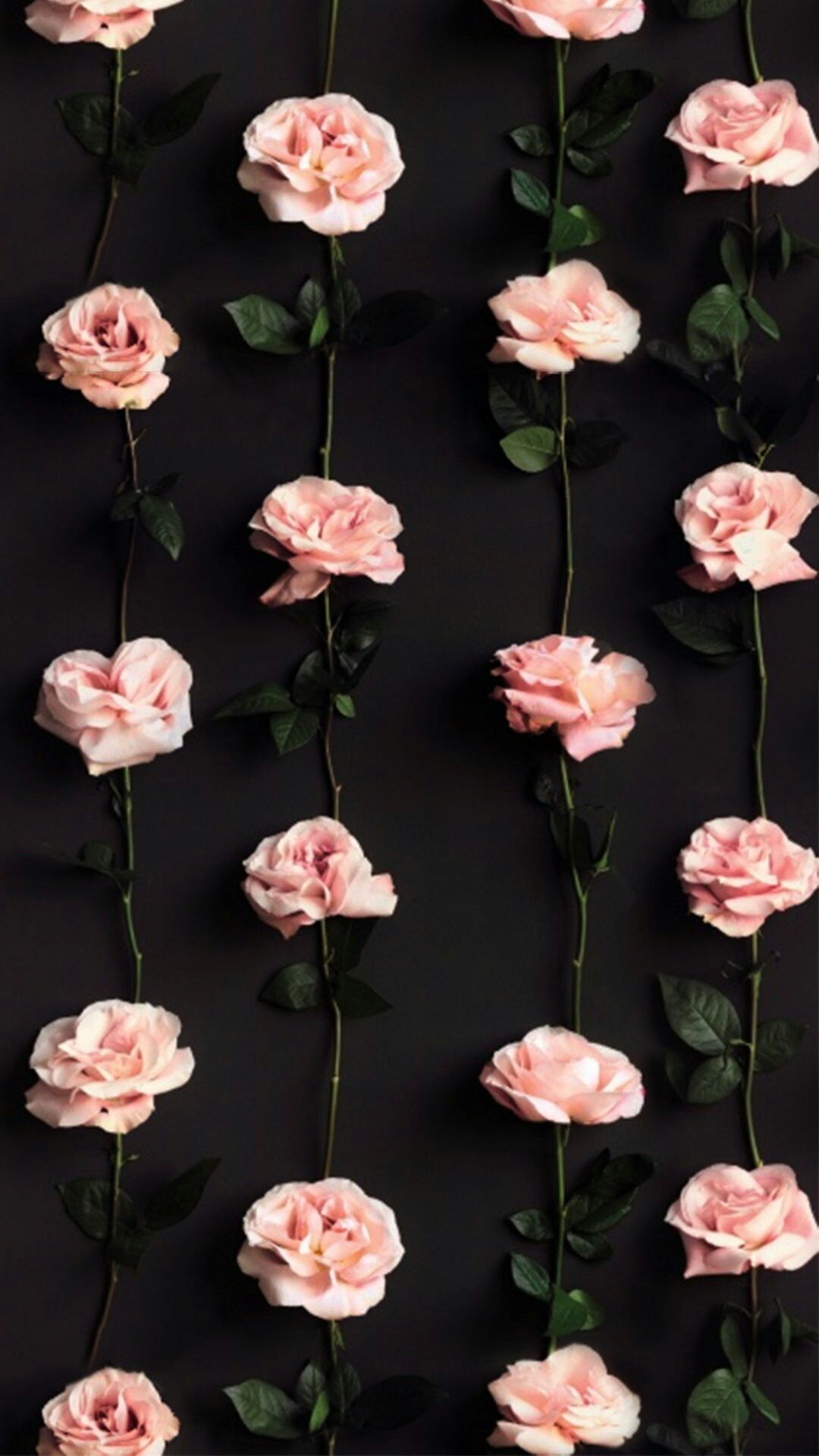 Beautiful flowers pattern Cellphone background, Iphone