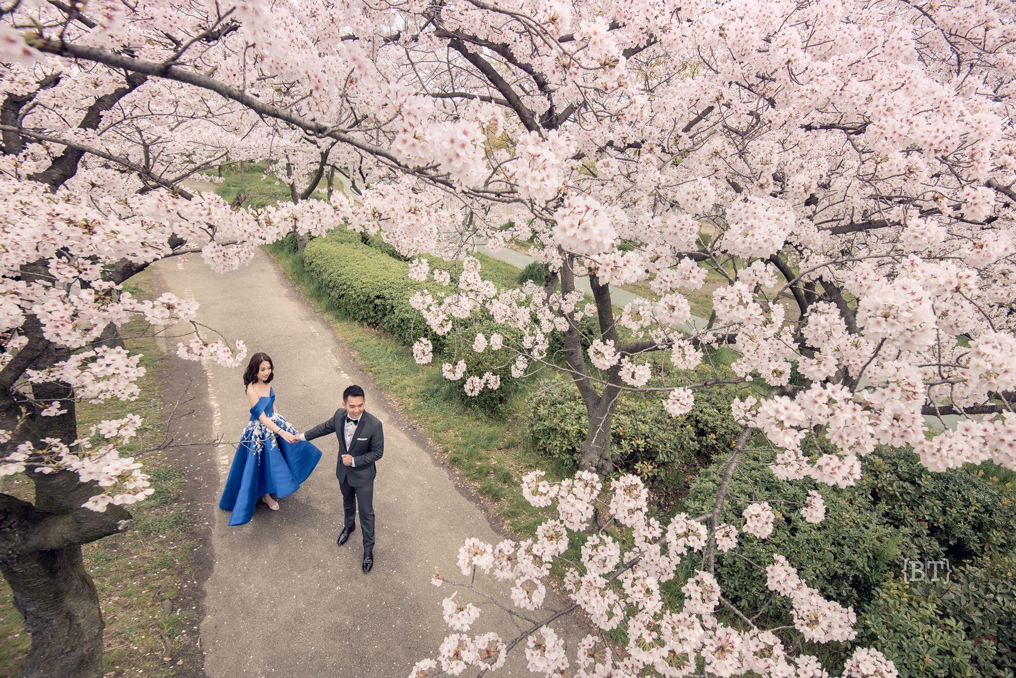 Osaka Japan Destination Prenup Engagement Session Blue Off Shoulder Dress Sakura Cherry Blossoms Japan Destinations Pre Wedding Photos Outdoor Wedding