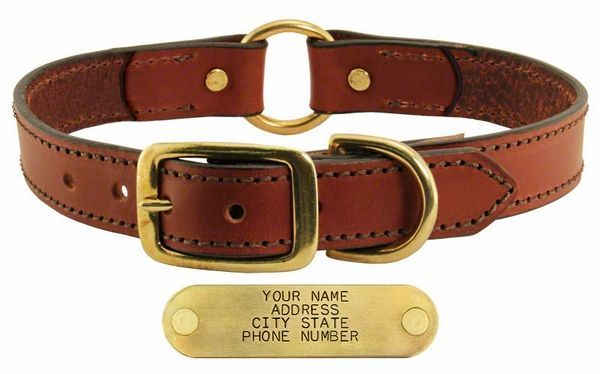 Online Shopping For With Free Worldwide Shipping Dog Collar With