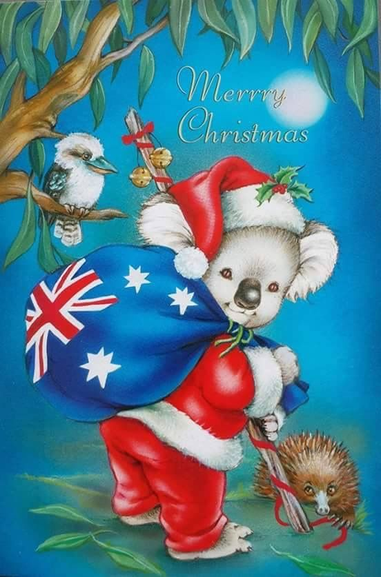 Christmas In Australia Cartoon.Pin By Aussie Maria On Christmas Australian Style