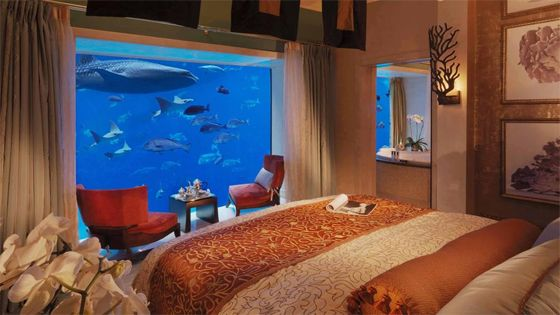 Atlantis, The Palm Dubai Bucket List Pinterest Vaca y Bellisima