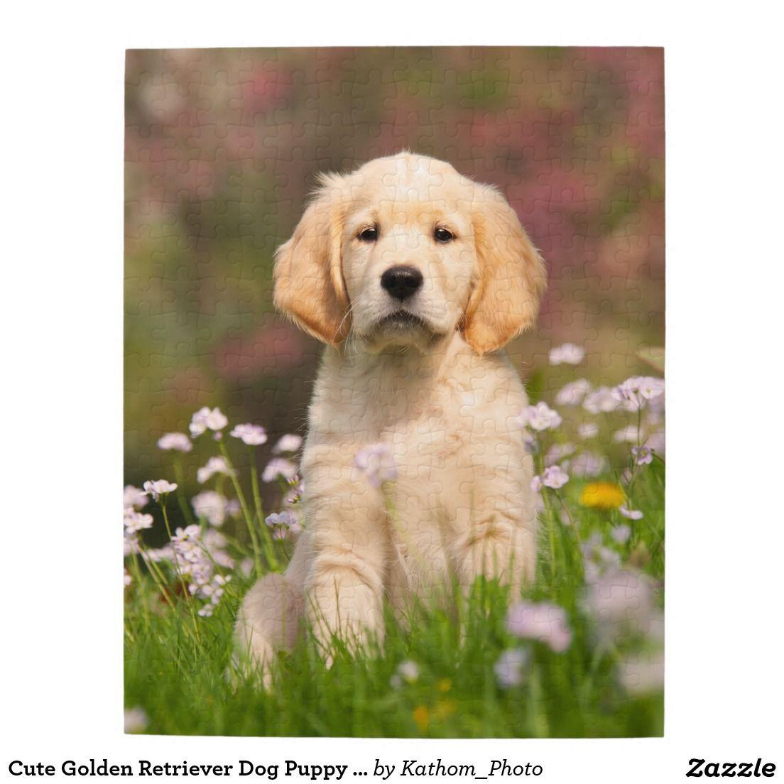 Cute Golden Retriever Dog Puppy Game 11x14 Jigsaw Puzzle Zazzle Com Dogs Golden Retriever Retriever Puppy Dogs Puppies
