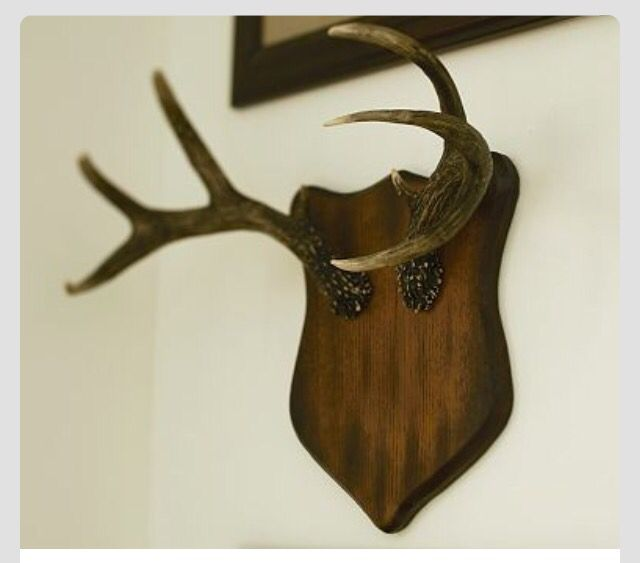 Pin by Sarah Case on Handmade | Antlers, Faux walls, Faux ...