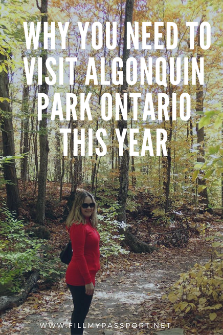 Why You Need to Visit Algonquin Park Ontario, Canada this year for Canada 150!