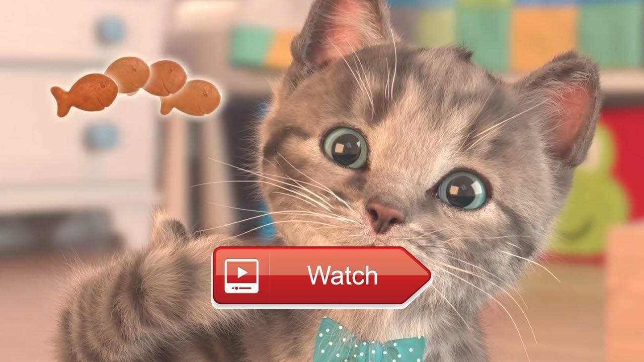 My Favorite Cat Little Kitten Pet Care Jogo De Gatinho Para