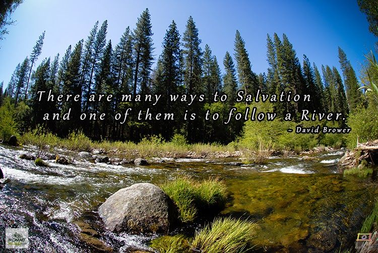 Inspirational Nature Quote - David Brower | www.MommyHiker.com