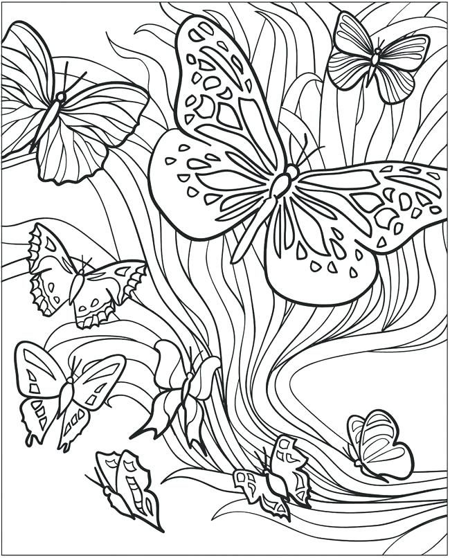Butterfly Coloring Pages For Adults Best Coloring Pages For Kids Butterfly Coloring Page Coloring Pages For Teenagers Insect Coloring Pages