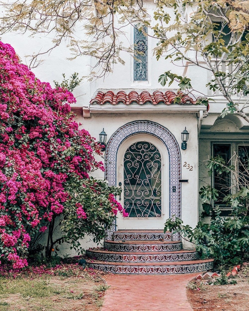 Bougainvillea Love In Los Angeles