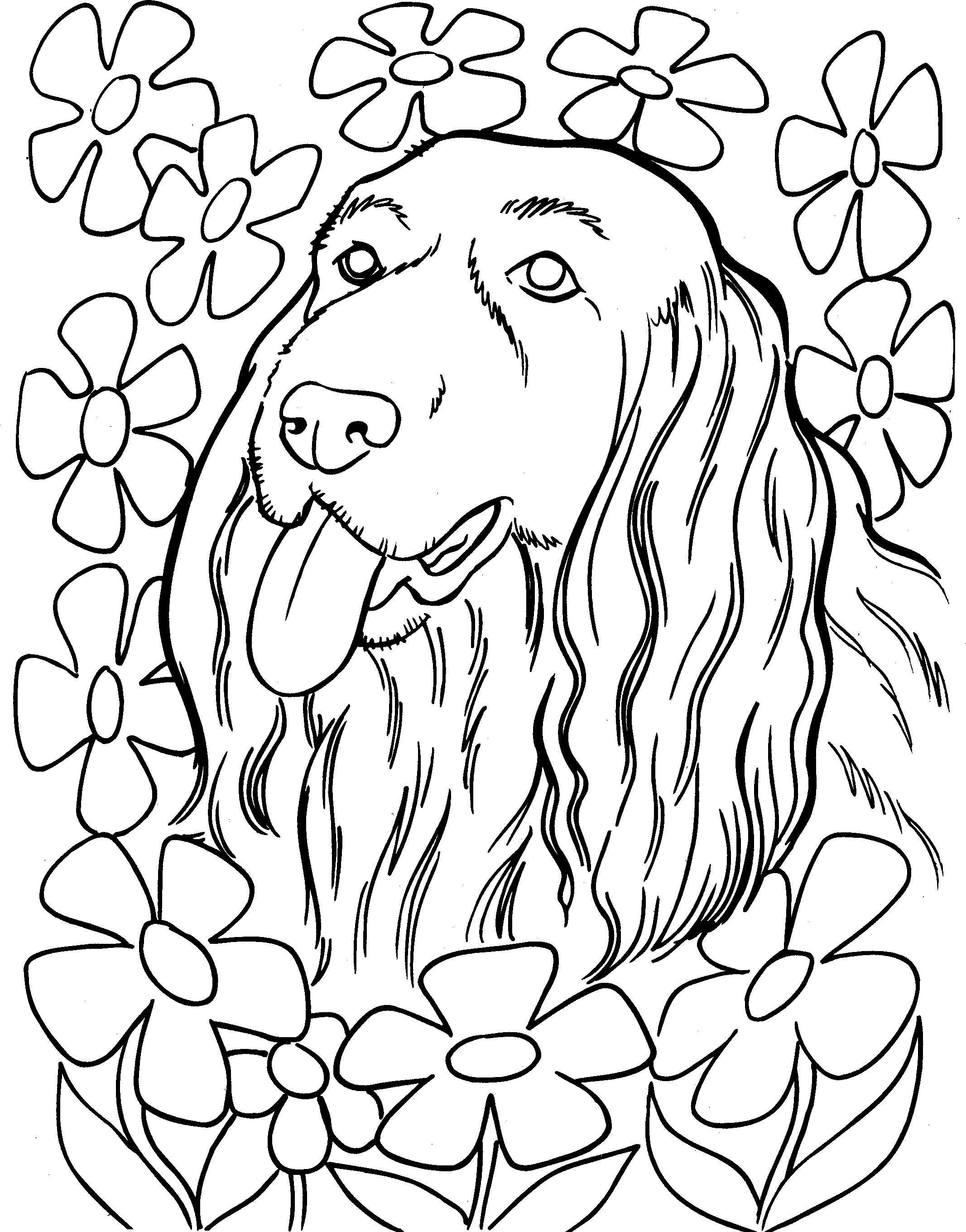 Kleurplaten Honden Voor Volwassenen.Kleurplaten Nieuwe Kleurplaat Kleurplaat Honden Kleurplaat